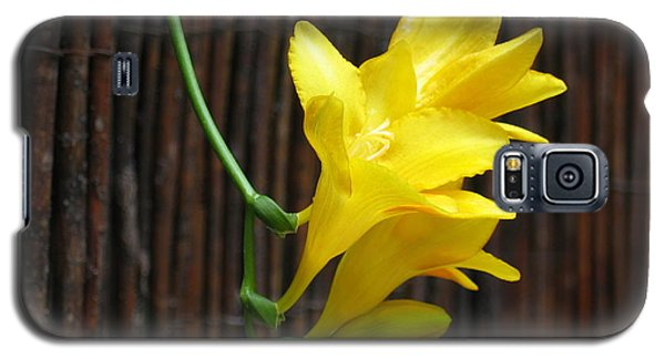 Yellow Petals Galaxy S5 Case by HEVi FineArt
