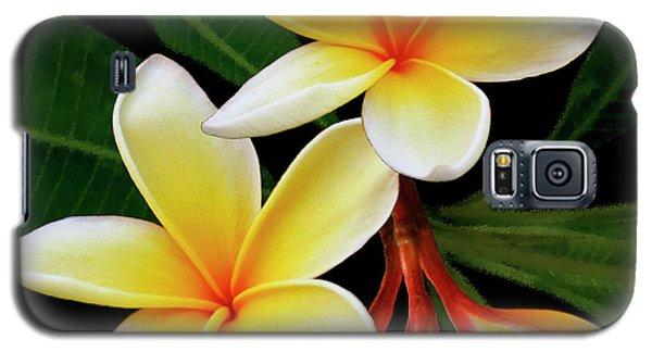Yellow Plumeria Galaxy S5 Case