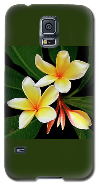 Yellow Plumeria Galaxy S5 Case