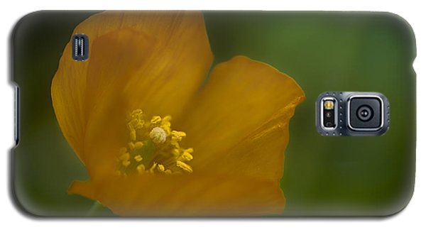 Yellow Poppy Galaxy S5 Case