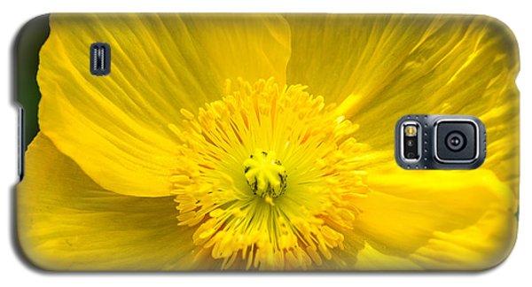 Yellow Poppy Galaxy S5 Case
