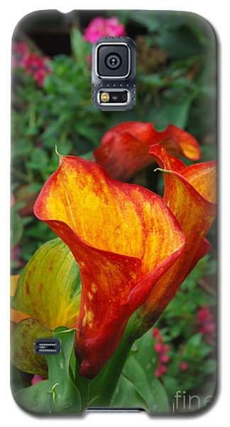 Galaxy S5 Case featuring the photograph Yellow Red Calla Lily by Eva Kaufman