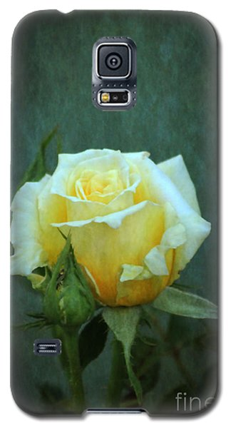 Galaxy S5 Case featuring the photograph Yellow Rose 2014 by Marjorie Imbeau