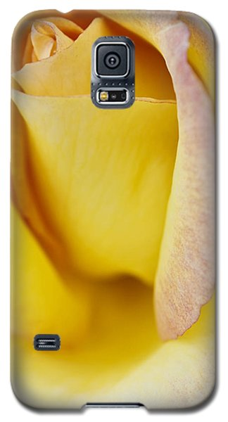 Galaxy S5 Case featuring the photograph Yellow Rose by Lana Enderle