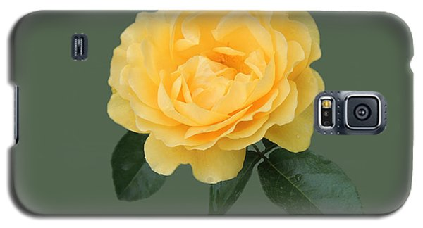 Yellow Rose Of Love Galaxy S5 Case