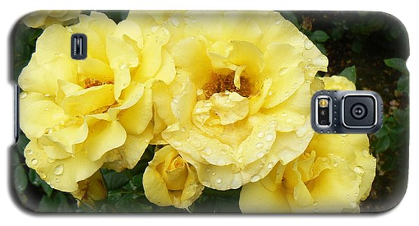Yellow Rose Of Pa Galaxy S5 Case by Michael Porchik