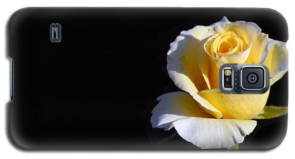 Yellow Rose On Black Galaxy S5 Case