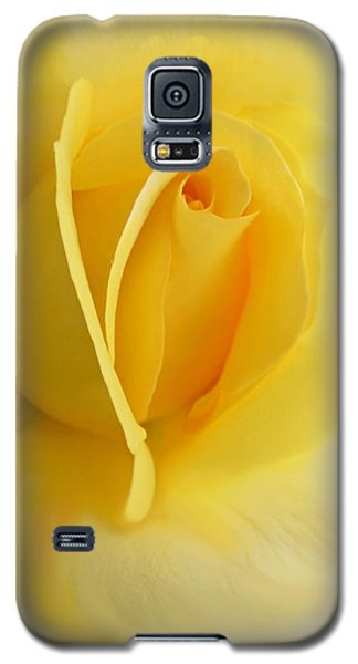 Yellow Rose Portrait Galaxy S5 Case