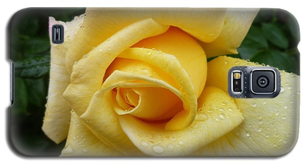 Yellow Rose Say Goodbye Galaxy S5 Case