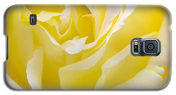 Yellow Rose Galaxy S5 Case by Svetlana Sewell