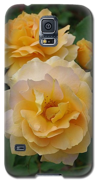 Galaxy S5 Case featuring the photograph Yellow Roses by Marilyn Wilson