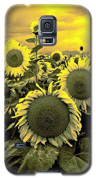 Yellow Sky Yellow Flowers. Galaxy S5 Case