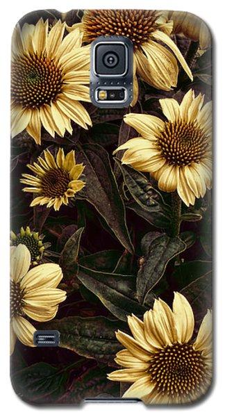 Yellow Sombrero Coneflower Galaxy S5 Case