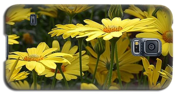 Yellow Splendor Galaxy S5 Case