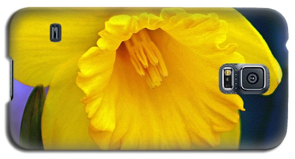 Galaxy S5 Case featuring the photograph Yellow Spring Daffodil by Kay Novy
