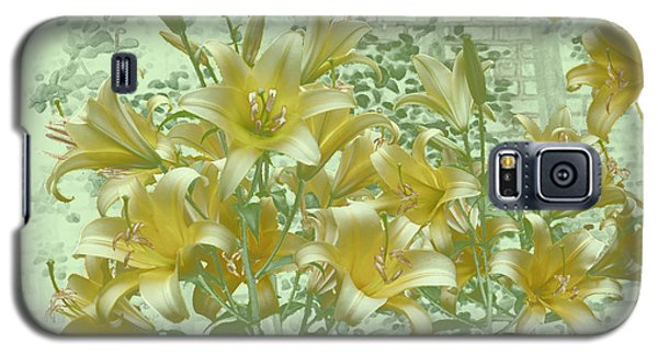 Galaxy S5 Case featuring the photograph Yellow Stargazers On Soft Green by Tom Wurl