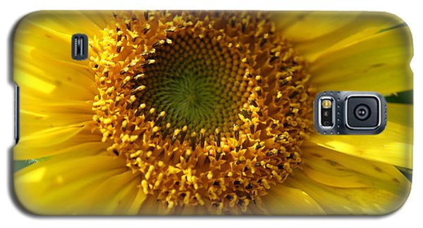 Galaxy S5 Case featuring the photograph Yellow Sunshine by Neal Eslinger