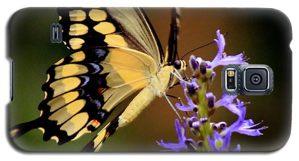 Yellow Swallowtail Galaxy S5 Case