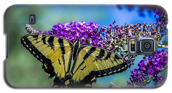 Galaxy S5 Case featuring the photograph Yellow Swallowtail by Phil Abrams