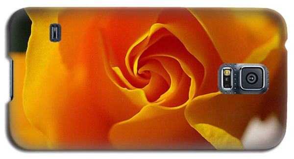 Galaxy S5 Case featuring the photograph Yellow Swirl by Joe Schofield