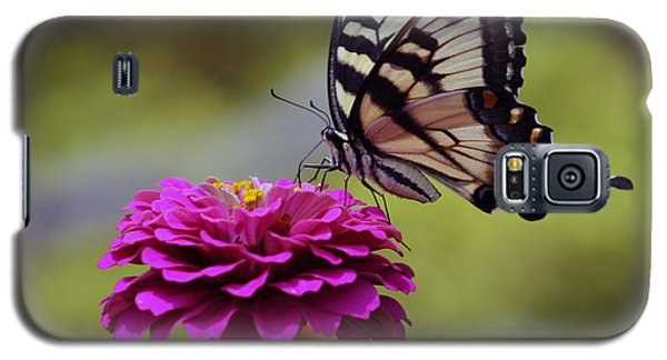 Galaxy S5 Case featuring the photograph Yellow Tiger Swallowtail Butterfly by Kay Novy