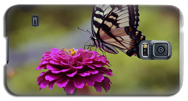 Yellow Tiger Swallowtail Butterfly Galaxy S5 Case