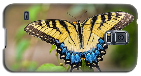 Yellow Tiger Swallowtail Galaxy S5 Case by Debbie Green