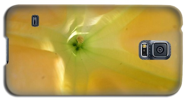 Galaxy S5 Case featuring the photograph Yellow Translucent Flower by Bev Conover