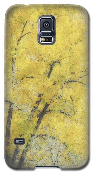 Yellow Trees Galaxy S5 Case by Ann Powell