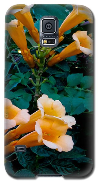 Yellow Trumpet Creeper Duo Galaxy S5 Case