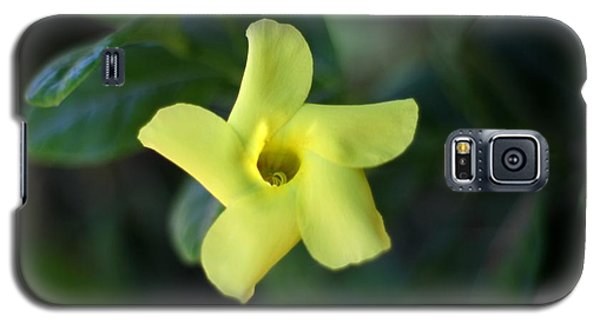 Galaxy S5 Case featuring the photograph Yellow Trumpet Flower by Ramabhadran Thirupattur