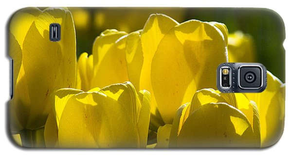 Yellow Tulips  Galaxy S5 Case