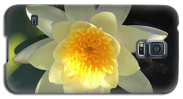 Yellow Water Lily Galaxy S5 Case by Pema Hou