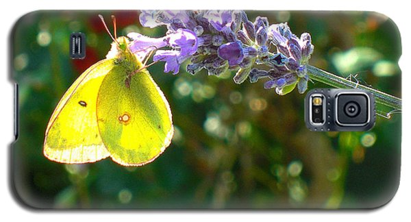 Galaxy S5 Case featuring the photograph Yellow Wings On Lavendar by Heidi Manly
