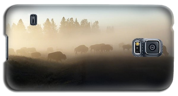 Yellowstone Bison In Early Morning Fog Galaxy S5 Case