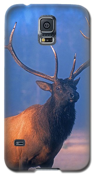 Galaxy S5 Case featuring the photograph Yellowstone Bull Elk by Dennis Cox WorldViews