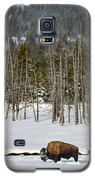 Yellowstone Winter Galaxy S5 Case