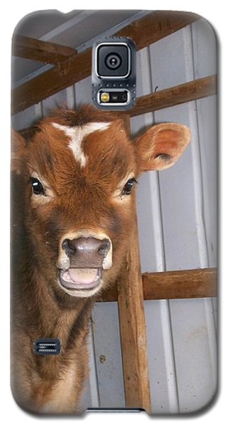Galaxy S5 Case featuring the photograph Yes I'm Talking To You by Sara  Raber