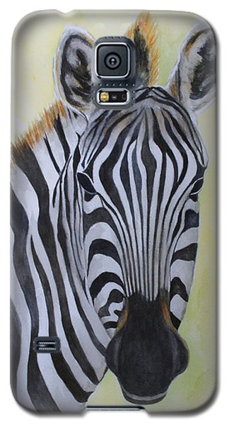 Yipes Stripes Galaxy S5 Case