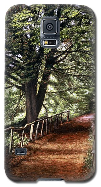 Galaxy S5 Case featuring the painting Yockletts Bank by Rosemary Colyer