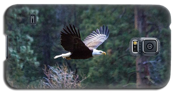 Yosemite Bald Eagle Galaxy S5 Case