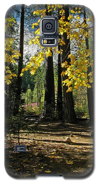 Galaxy S5 Case featuring the photograph Yosemite Fen Way by John Haldane