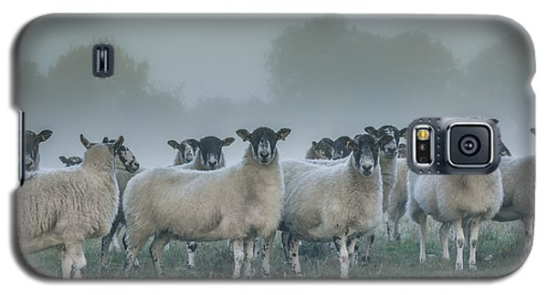 You And Ewes Army? Galaxy S5 Case by Chris Fletcher
