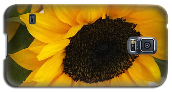 You Are My Sunshine - Greeting Card Galaxy S5 Case