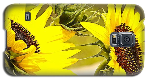 Galaxy S5 Case featuring the photograph You Are My Sunshine.... by Tammy Schneider