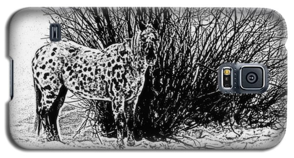 Galaxy S5 Case featuring the photograph You Can't See Me by Karen Shackles