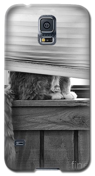 You Can't See Me Galaxy S5 Case by Karen Slagle