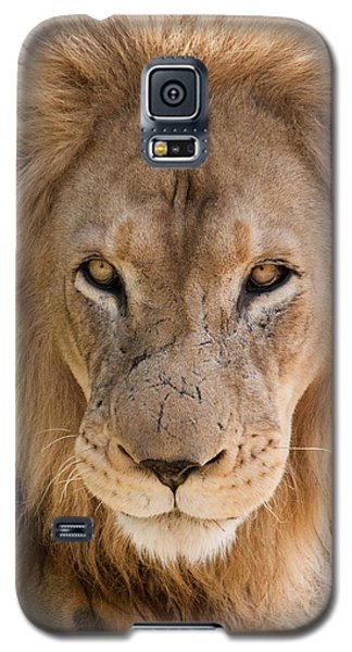 You Look Like Lunch Galaxy S5 Case