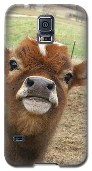 You Looking At Me Galaxy S5 Case by Sara  Raber