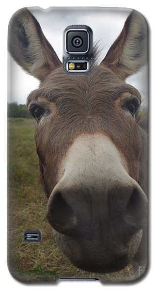 You Looking At My Woman Galaxy S5 Case by Peter Piatt